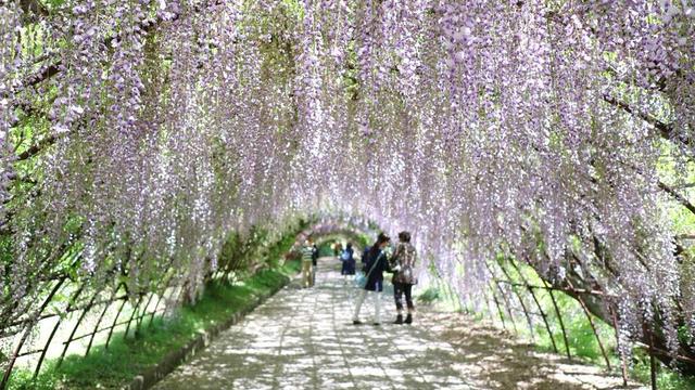 【福岡】女子大生の福岡旅行 二泊三日