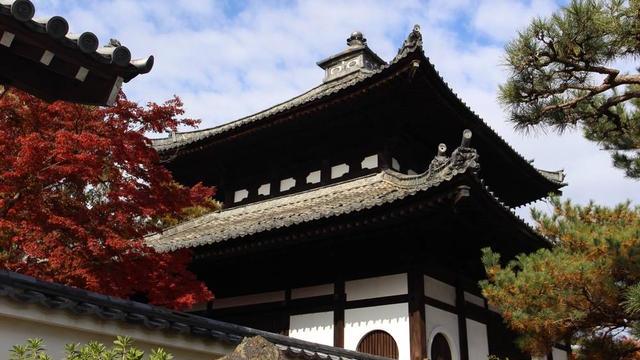 そうだ、京都へ紅葉を見に行こう🍁