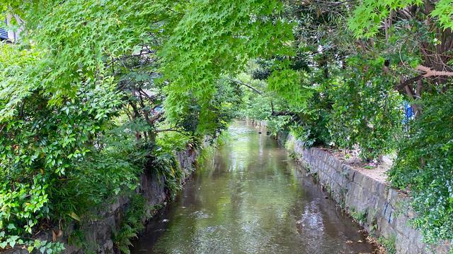 3泊4日京都の自然を堪能する一人旅☾