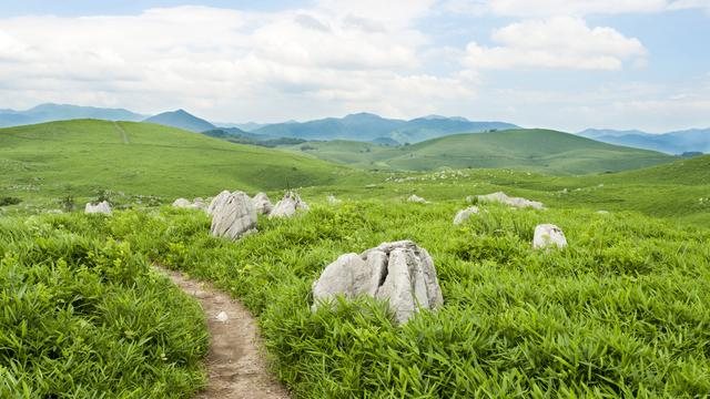 小京都津和野散策と歴史の街やまぐち、萩往還と秋芳洞まで欲張る旅