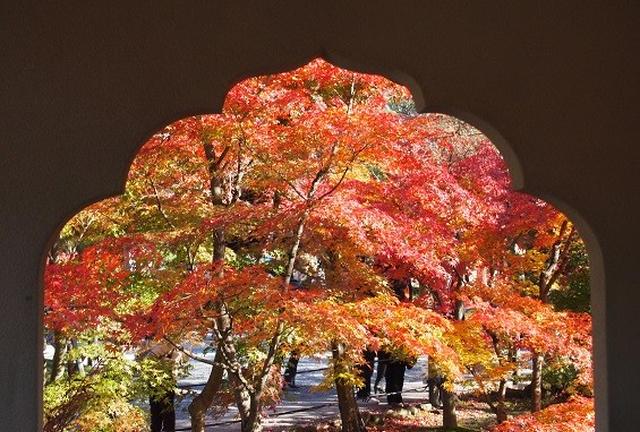 京都紅葉とcafeめぐり