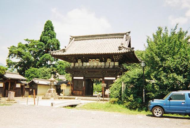 京都 ぬこの旅