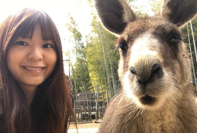 カンガルーと自撮りできる♡東京から1時間半の動物スポット。
