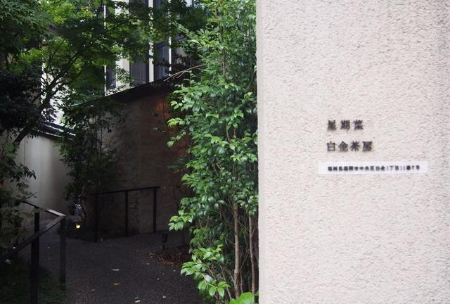 福岡カフェ巡り☕︎