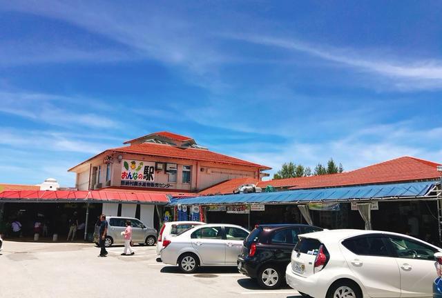 初めての沖縄観光✈️2泊3日で本島を満喫🏖 - 美ら海水族館とその周辺を満喫!編