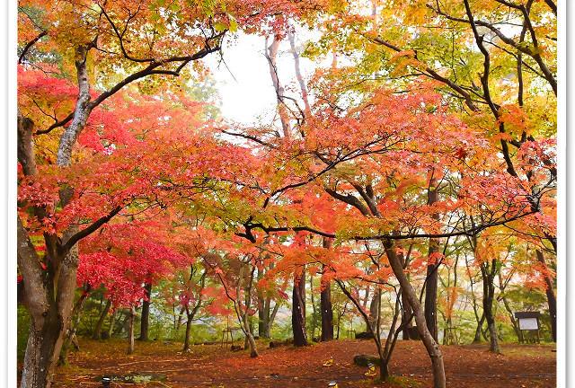 秋の紅葉デート。長瀞ライトアップ紅葉まつりと長瀞散策を満喫。