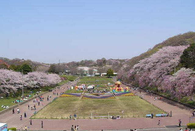 神奈川県で子連れで遊ぶとこ
