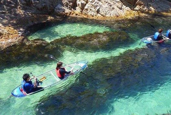透明度の高い海でクリアカヤック体験