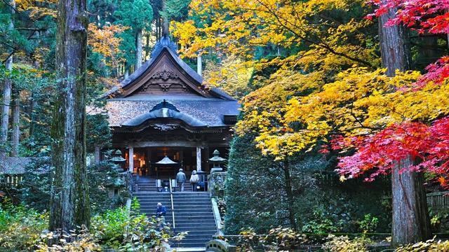 (10月下旬~11月上旬)長野県南信州 駒ヶ根高原「光前寺」&周辺の紅葉スポット