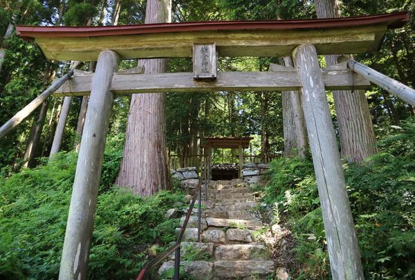 鎌倉神社の写真・動画_image_407686