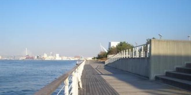 大阪湾に面した大阪市住之江区。大阪府咲洲庁舎最上階から大阪平野を一望