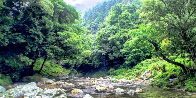 四国のまん中、自然と寺とカフェ。