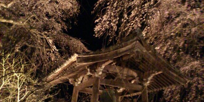 いにしえの桜に浮かぶ五ヶ瀬町
