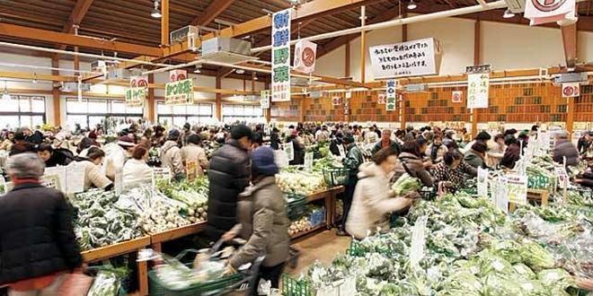 熊本⇄糸島 インスタ映えスポット巡り -日帰り-