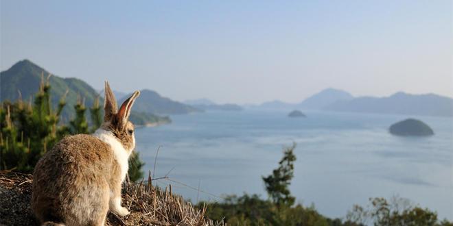 広島から尾道へ行く旅