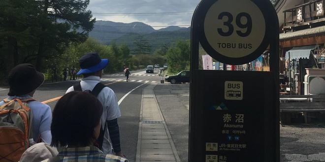 奥日光初夏のハイキング