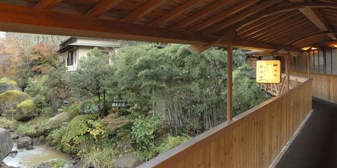 私の岐阜県と長野県と福井県の自然の旅行です。