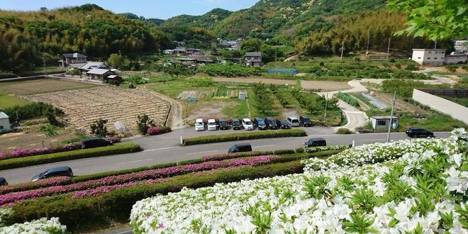 秋の和歌山自然巡り🍁