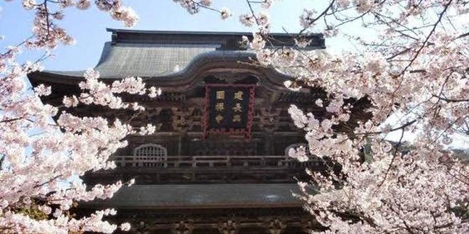 魅惑の鎌倉 寺巡りコース(不定期更新)