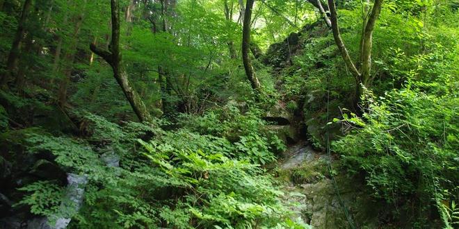 ~自然と歴史が融合した桐生を満喫~根本山までドライブの旅