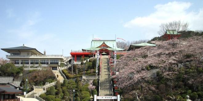 桜🌸の⛩成田山⛰と🍡成田参道食べ歩き🍘