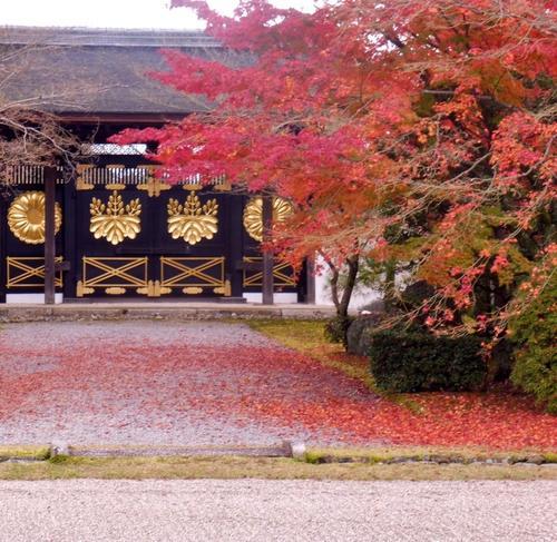 """ゆる~く京都歴史探訪♡テーマは""""秀吉と桃山文化"""""""