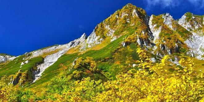 【9月下旬〜10月上旬】中央アルプス千畳敷カールの紅葉  標高2,612mロープウェイで行ける絶景