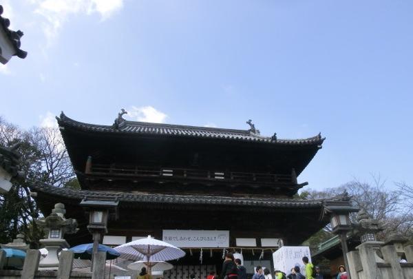 琴平山の写真・動画_image_189320
