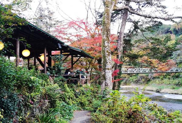 澤乃井園 清流ガーデン