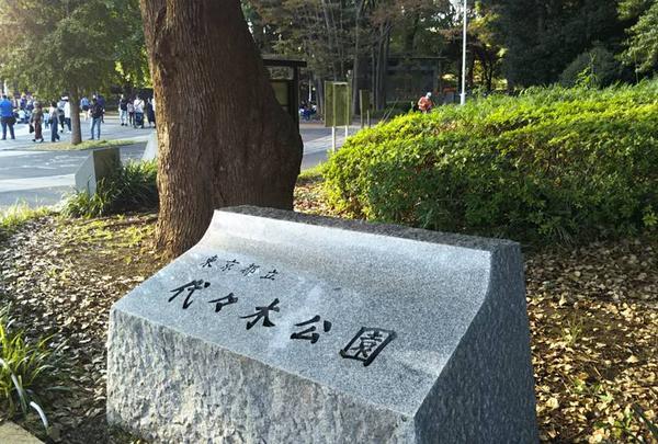 代々木公園の写真・動画_image_525930
