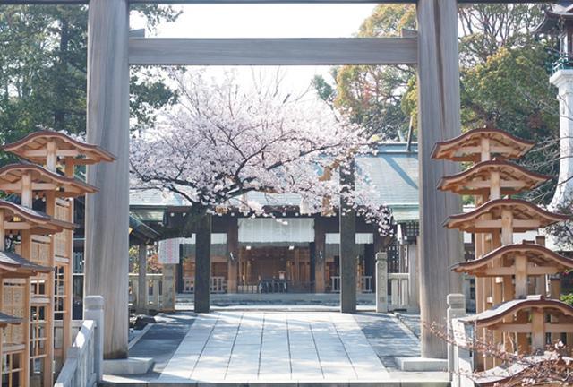 桜🌸を見に🚢横浜散歩