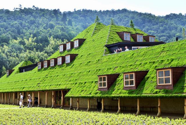 琵琶湖へ、藤森建築+バームクーヘンと淡海地鶏を食べに