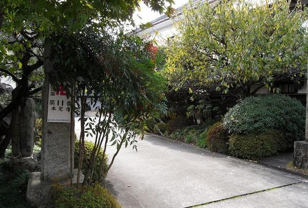勝林寺の写真・動画_image_29228