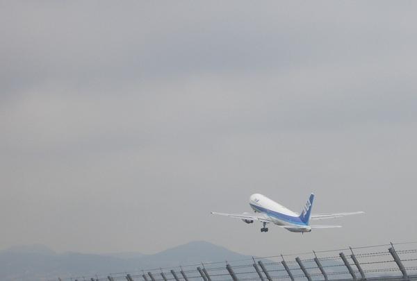 大阪国際空港(伊丹空港)の写真・動画_image_144569