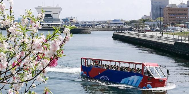 横浜 各種クルージング・乗船体験・船鑑賞など